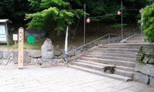 唐津城の天守までの階段