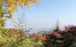 金比羅台からの眺め