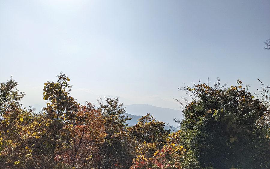 高尾山頂の展望台から見える景色